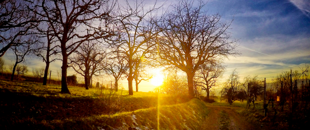 Sonnenuntergang Nimburg